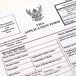 Image result for new h1b application